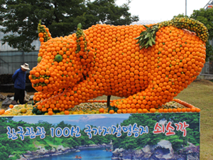 animal sculpture made of oranges in South Korea